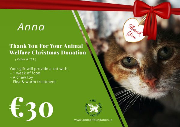 Christmas-Donations-Gift-Cat-Sample