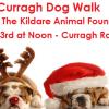 Annual Curragh Dog Walk