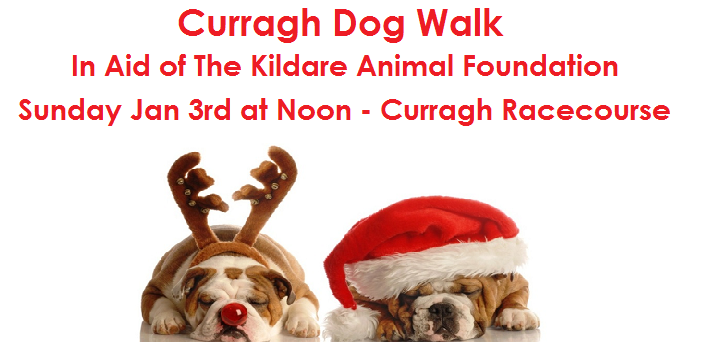 Annual Curragh Dog Walk